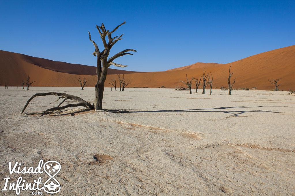 Foto Dead Vlei para viajar a Namibia