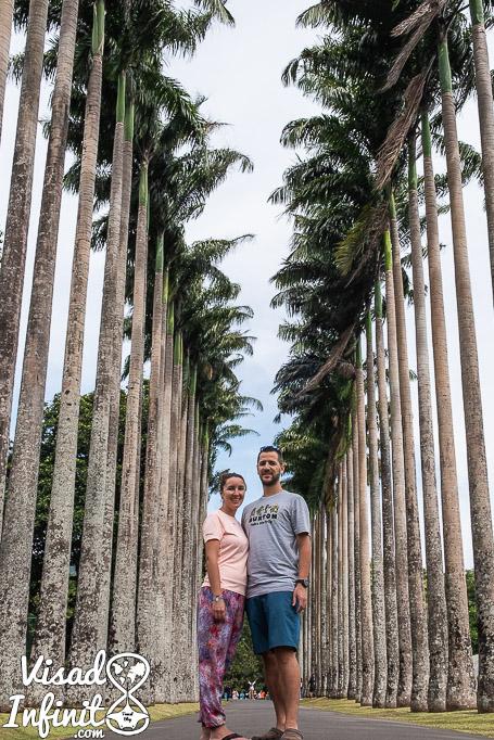 Jardin botánico Kandy