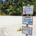 Maldivas Bikini beach cerveza