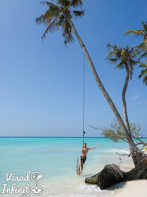 Palmeras en Fulidhoo Maldivas